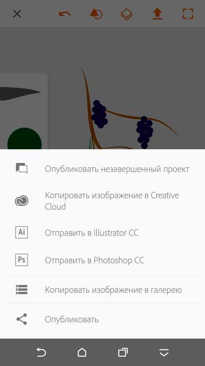 Adobe-Illustrator-Draw-–-векторная-графика-6